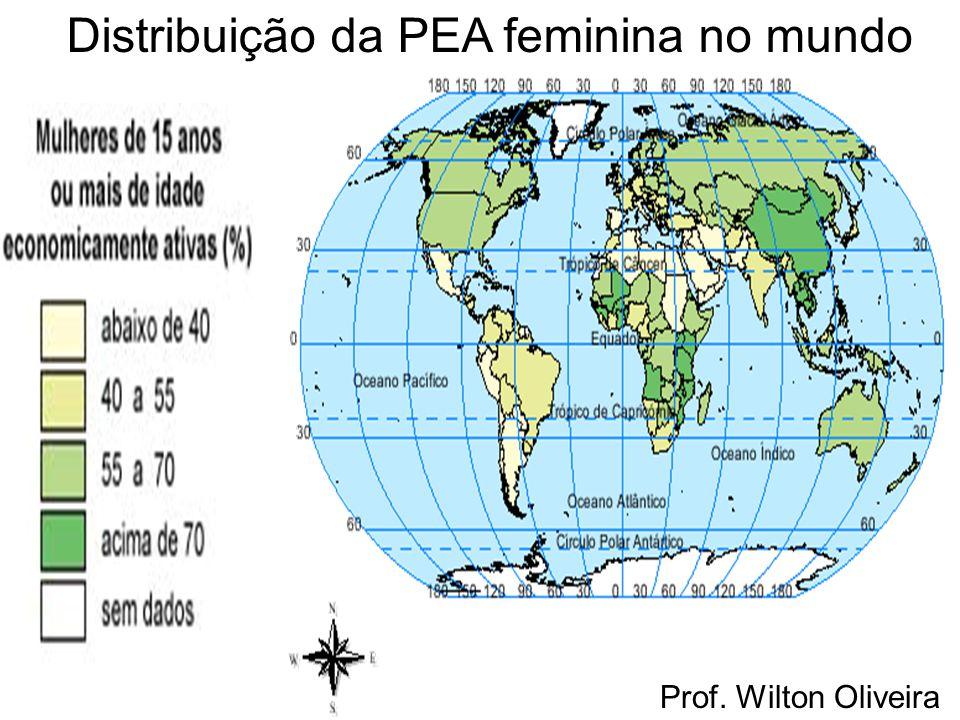 Prof. Wilton Oliveira Distribuição da PEA feminina no mundo