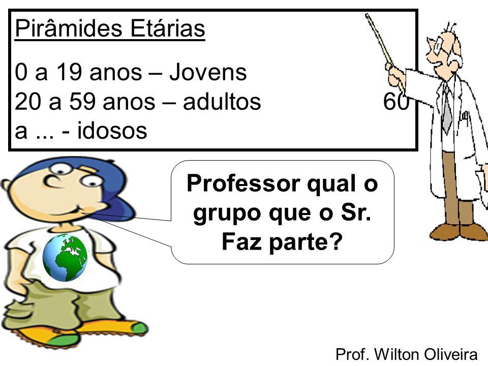 Prof. Wilton Oliveira Pirâmides Etárias 0 a 19 anos – Jovens 20 a 59 anos – adultos 60 a... - idosos Professor qual o grupo que o Sr. Faz parte?