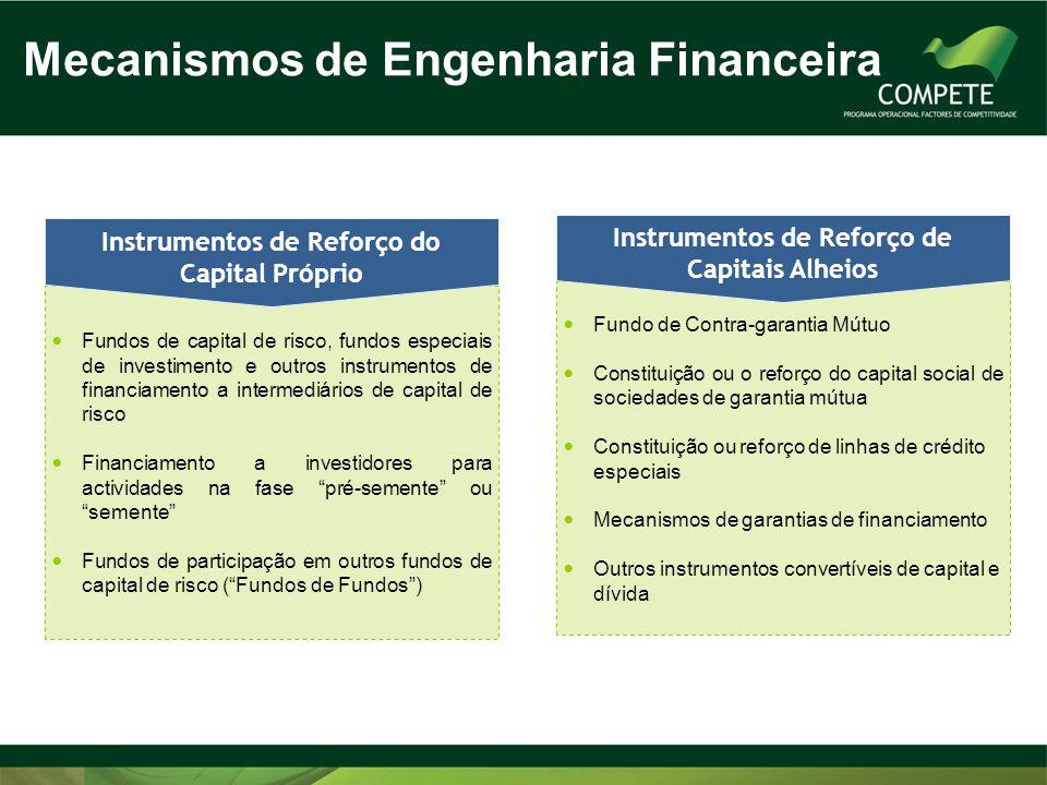  Fundos de capital de risco, fundos especiais de investimento e outros instrumentos de financiamento a intermediários de capital de risco  Financiam