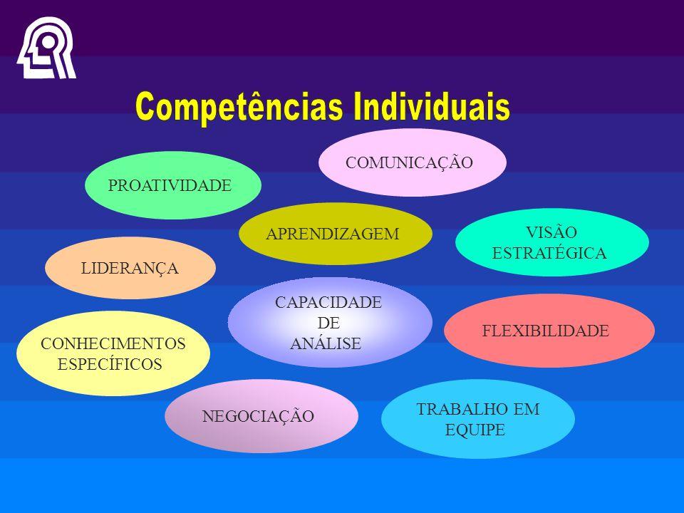 LIDERANÇA COMUNICAÇÃO APRENDIZAGEM PROATIVIDADE VISÃO ESTRATÉGICA FLEXIBILIDADE CONHECIMENTOS ESPECÍFICOS TRABALHO EM EQUIPE NEGOCIAÇÃO CAPACIDADE DE