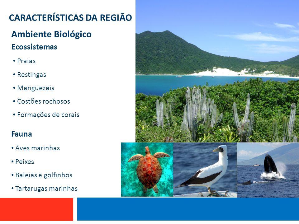 CARACTERÍSTICAS DA REGIÃO Ambiente Biológico Embarcações de Atafona que utilizam espinhel e linha de mão. Embarcação que utiliza linha de mão Desembar