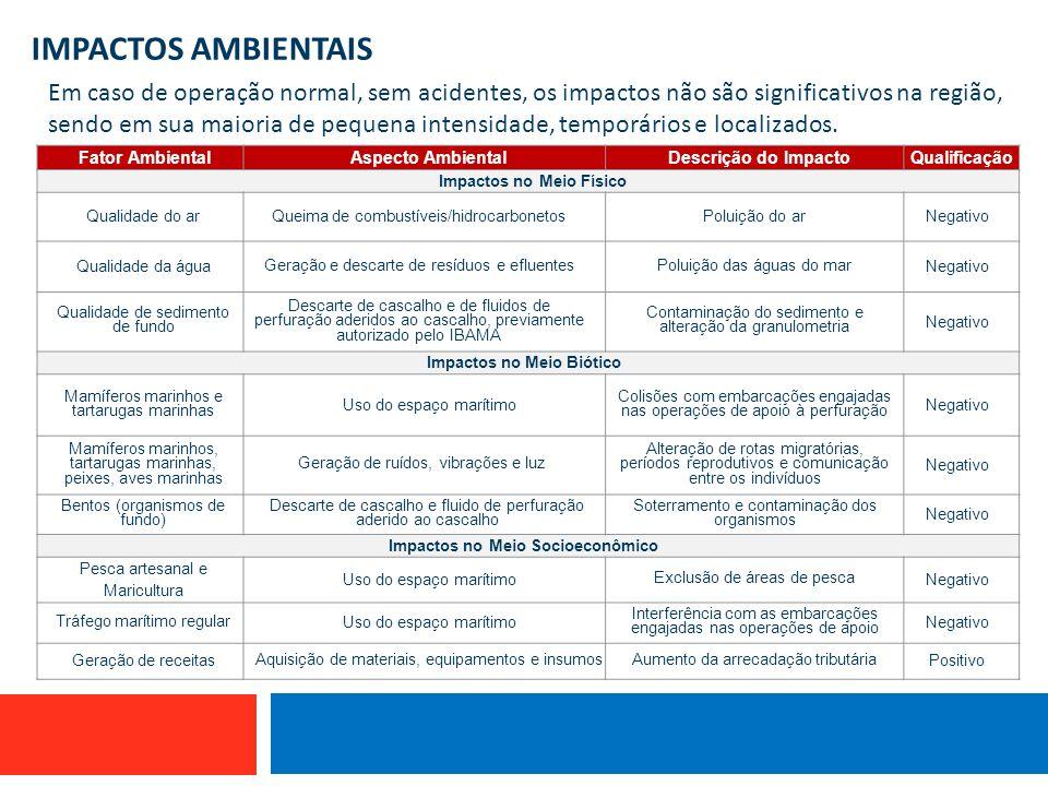 IMPACTOS AMBIENTAIS Embarcação que utiliza linha de mão Em caso de operação normal, sem acidentes, os impactos não são significativos na região, sendo