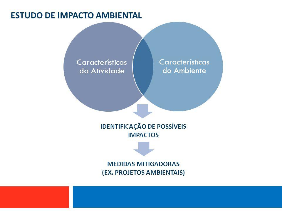ESTUDO DE IMPACTO AMBIENTAL MEDIDAS MITIGADORAS (EX. PROJETOS AMBIENTAIS) IDENTIFICAÇÃO DE POSSÍVEIS IMPACTOS