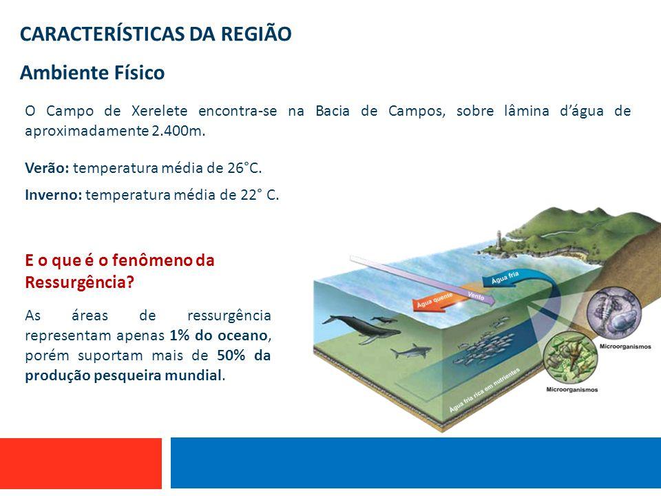CARACTERÍSTICAS DA REGIÃO Ambiente Físico O Campo de Xerelete encontra-se na Bacia de Campos, sobre lâmina d'água de aproximadamente 2.400m. Verão: te