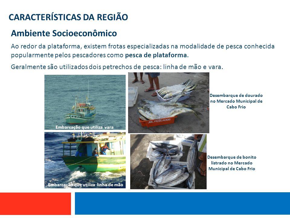 CARACTERÍSTICAS DA REGIÃO Ambiente Socioeconômico Ao redor da plataforma, existem frotas especializadas na modalidade de pesca conhecida popularmente