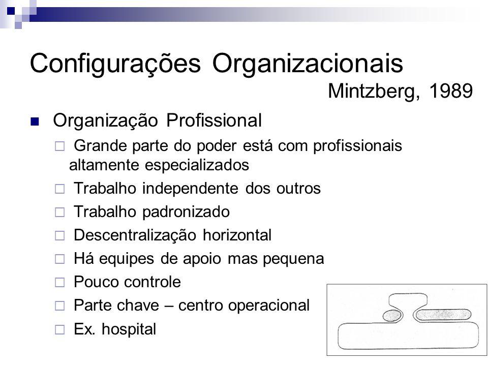  Organização Profissional  Grande parte do poder está com profissionais altamente especializados  Trabalho independente dos outros  Trabalho padro