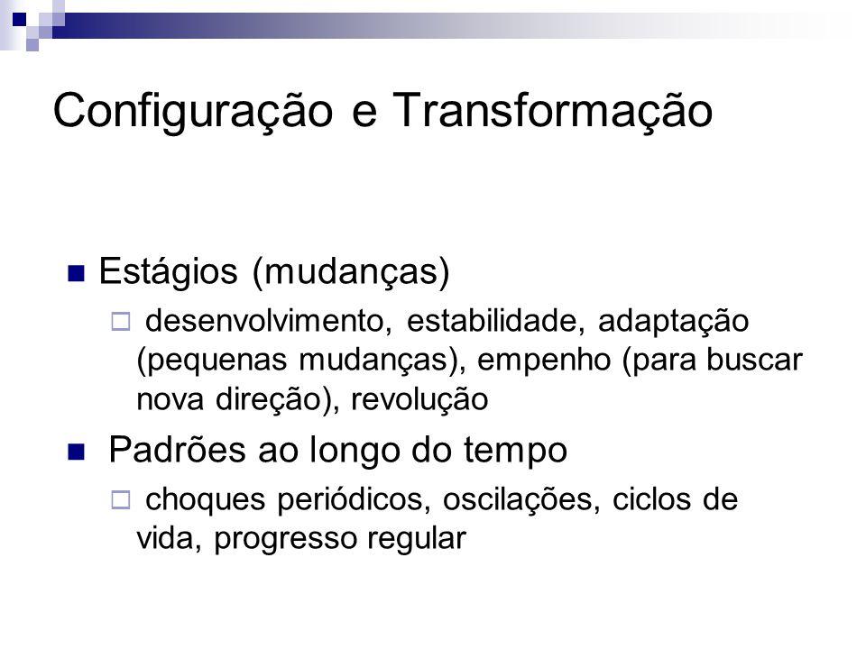  Estágios (mudanças)  desenvolvimento, estabilidade, adaptação (pequenas mudanças), empenho (para buscar nova direção), revolução  Padrões ao longo do tempo  choques periódicos, oscilações, ciclos de vida, progresso regular Configuração e Transformação