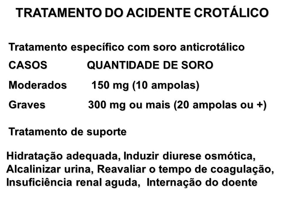 TRATAMENTO DO ACIDENTE CROTÁLICO Tratamento específico com soro anticrotálico CASOS QUANTIDADE DE SORO Moderados 150 mg (10 ampolas) Graves 300 mg ou