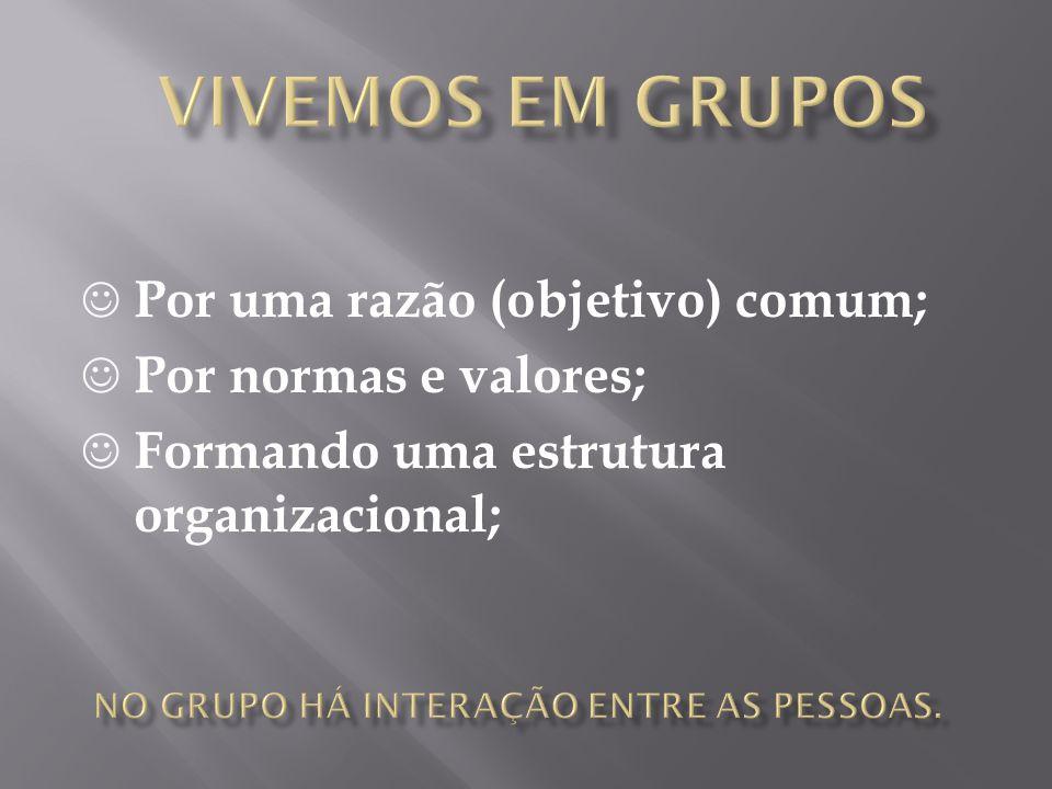  Por uma razão (objetivo) comum;  Por normas e valores;  Formando uma estrutura organizacional;