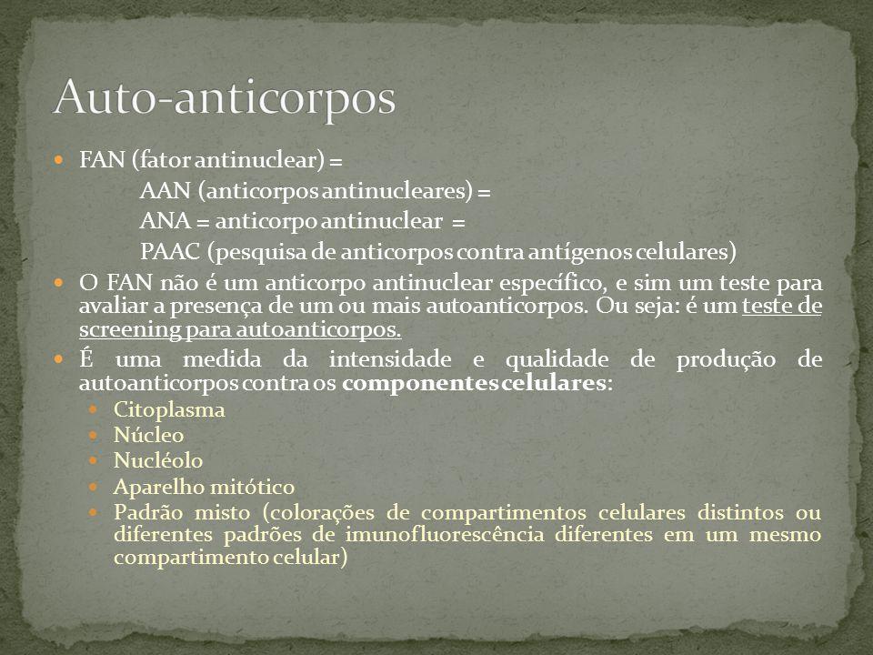4.PADRÃO NUCLEAR PONTILHADO GROSSO: -Anticorpo anti-Sm: marcador para LES.