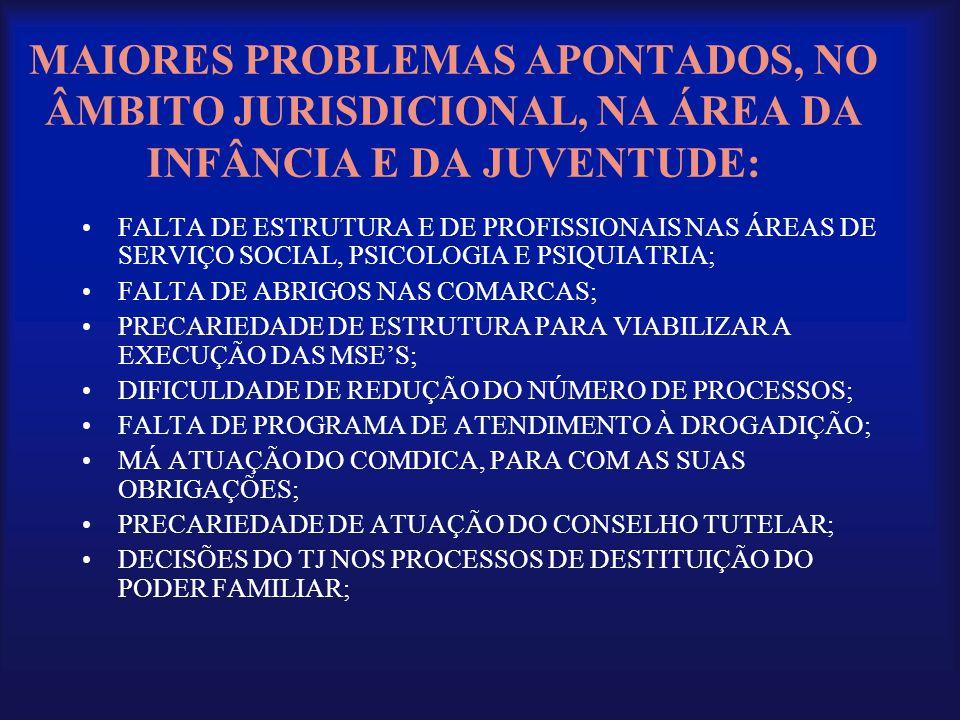 MAIORES PROBLEMAS APONTADOS, NO ÂMBITO JURISDICIONAL, NA ÁREA DA INFÂNCIA E DA JUVENTUDE: •FALTA DE ESTRUTURA E DE PROFISSIONAIS NAS ÁREAS DE SERVIÇO