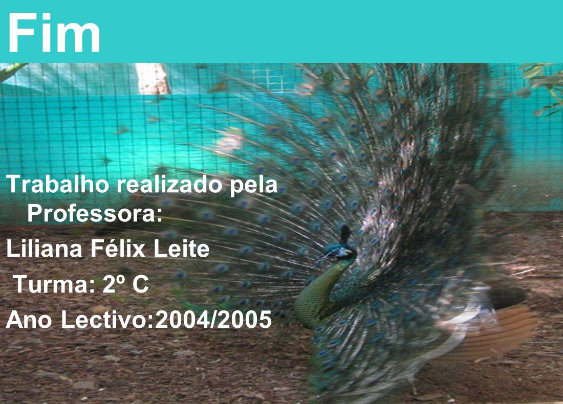 Fim Trabalho realizado pela Professora: Liliana Félix Leite Turma: 2º C Ano Lectivo:2004/2005