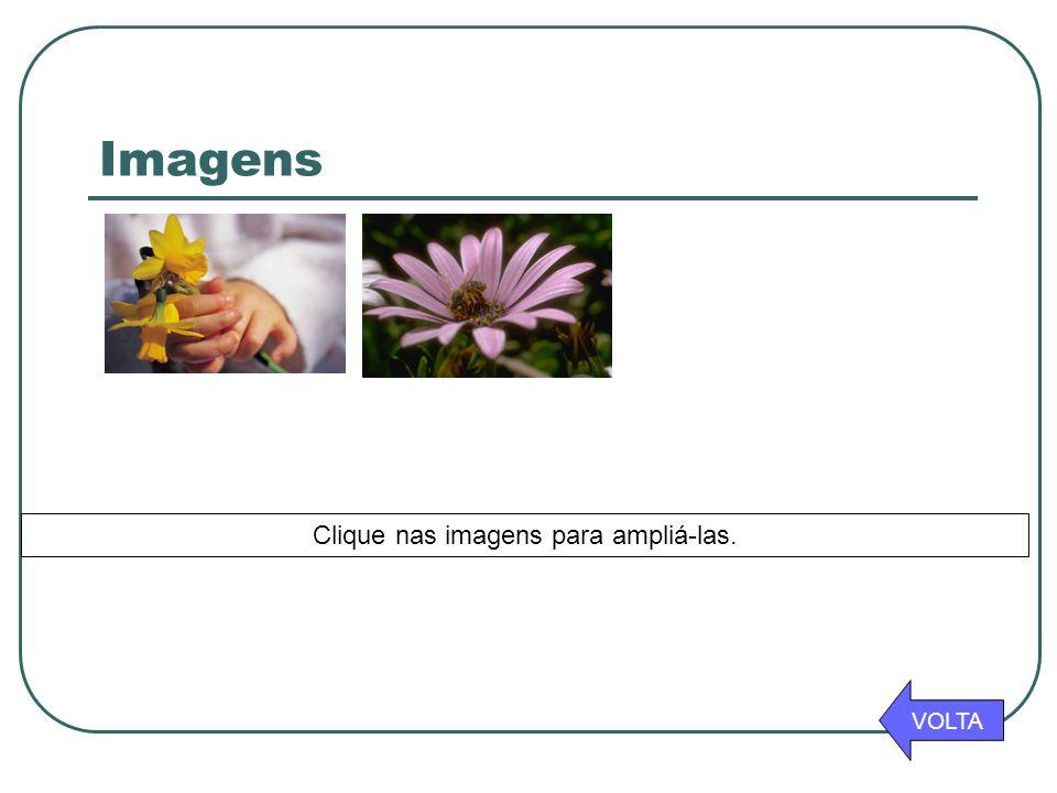 Imagens VOLTA Clique nas imagens para ampliá-las.