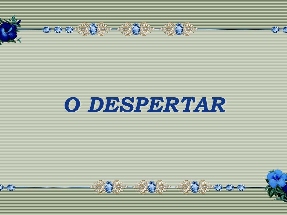 O DESPERTAR O DESPERTAR