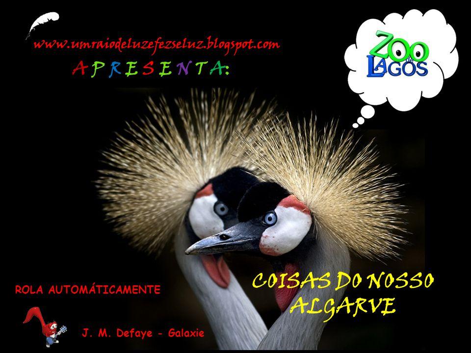 www.umraiodeluzefezseluz.blogspot.com A P R E S E N T A: COISAS DO NOSSO ALGARVE J.