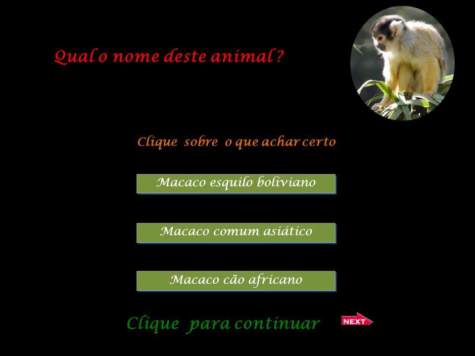 O Crowned Crane é originário de: Clique sobre o que achar certo África do Sul América Central África Meridional Clique para continuar