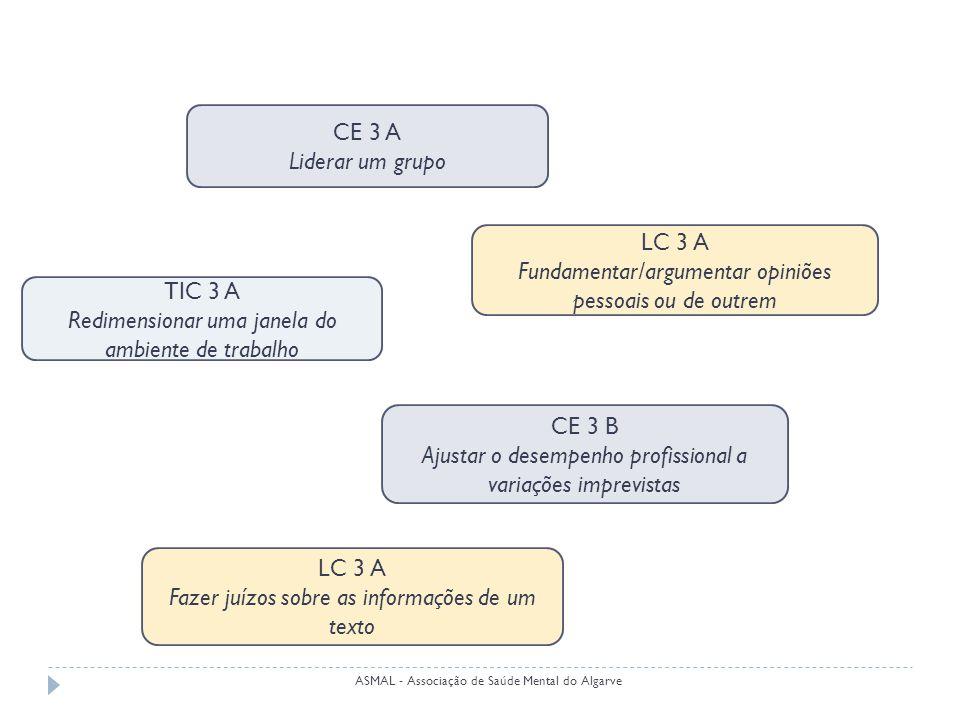 CE 3 A Liderar um grupo CE 3 B Ajustar o desempenho profissional a variações imprevistas LC 3 A Fundamentar/argumentar opiniões pessoais ou de outrem