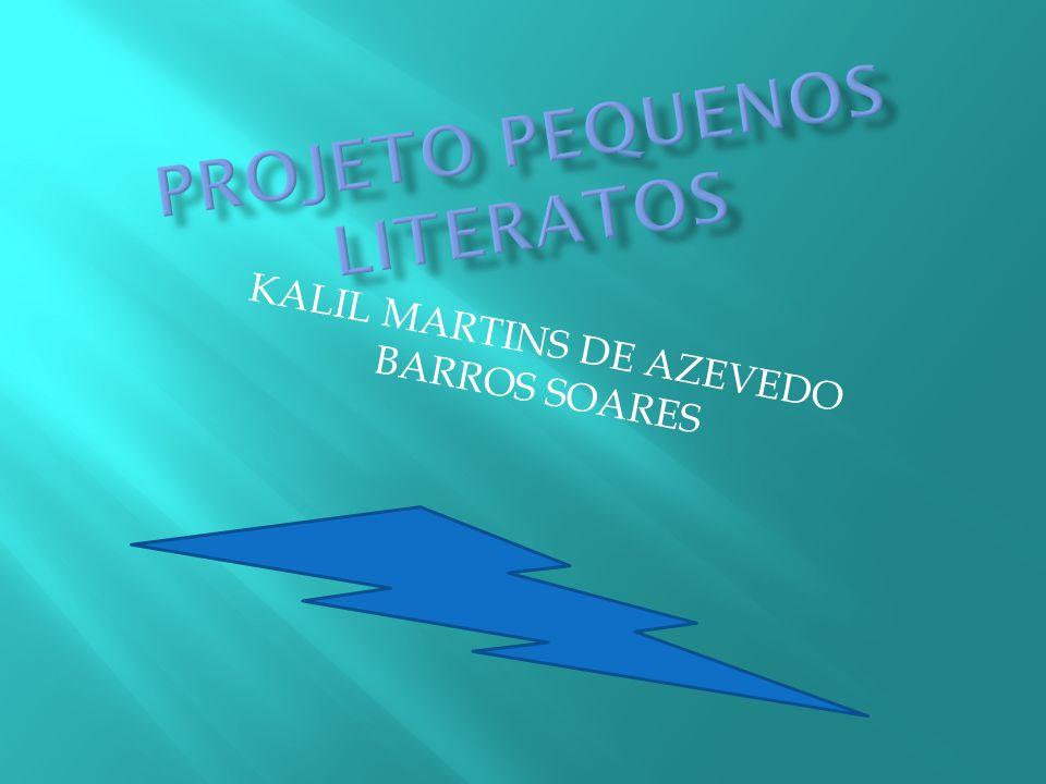 KALIL MARTINS DE AZEVEDO BARROS SOARES
