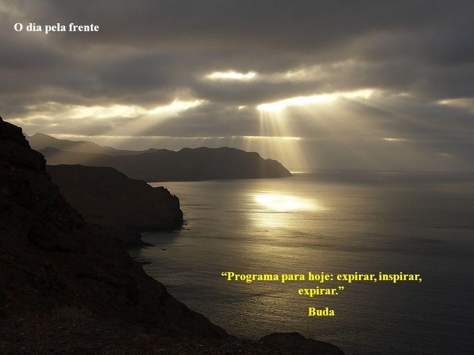 Programa para hoje: expirar, inspirar, expirar. Buda O dia pela frente