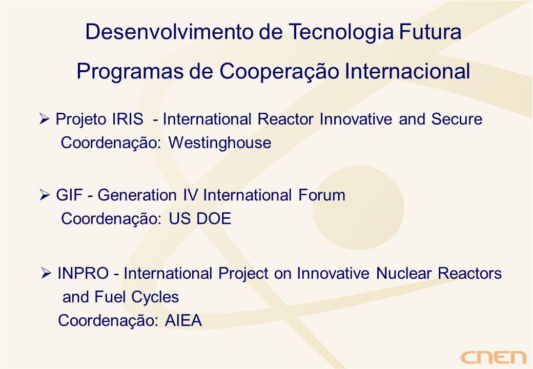 Desenvolvimento de Tecnologia Futura Programas de Cooperação Internacional  Projeto IRIS - International Reactor Innovative and Secure Coordenação: Westinghouse  GIF - Generation IV International Forum Coordenação: US DOE  INPRO - International Project on Innovative Nuclear Reactors and Fuel Cycles Coordenação: AIEA