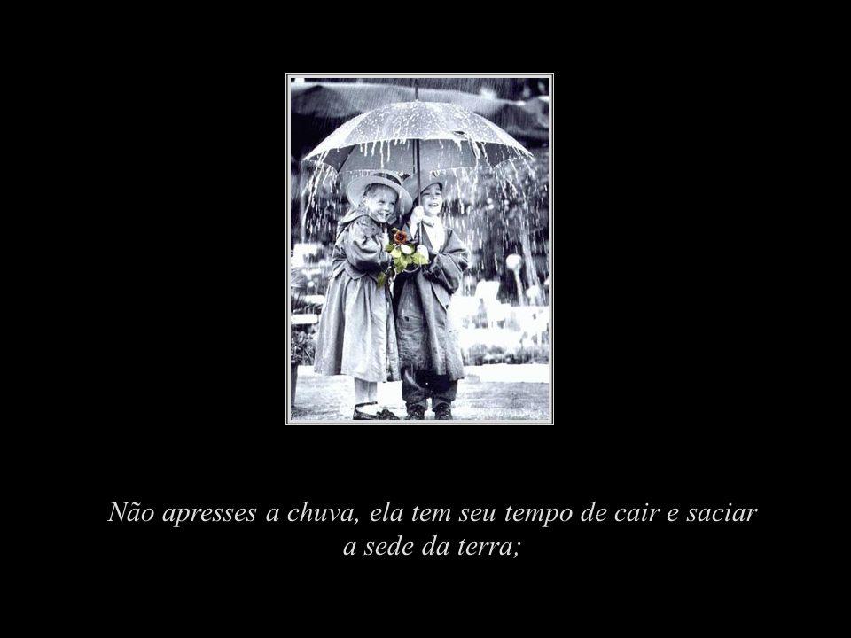 Não apresses a chuva, ela tem seu tempo de cair e saciar a sede da terra;