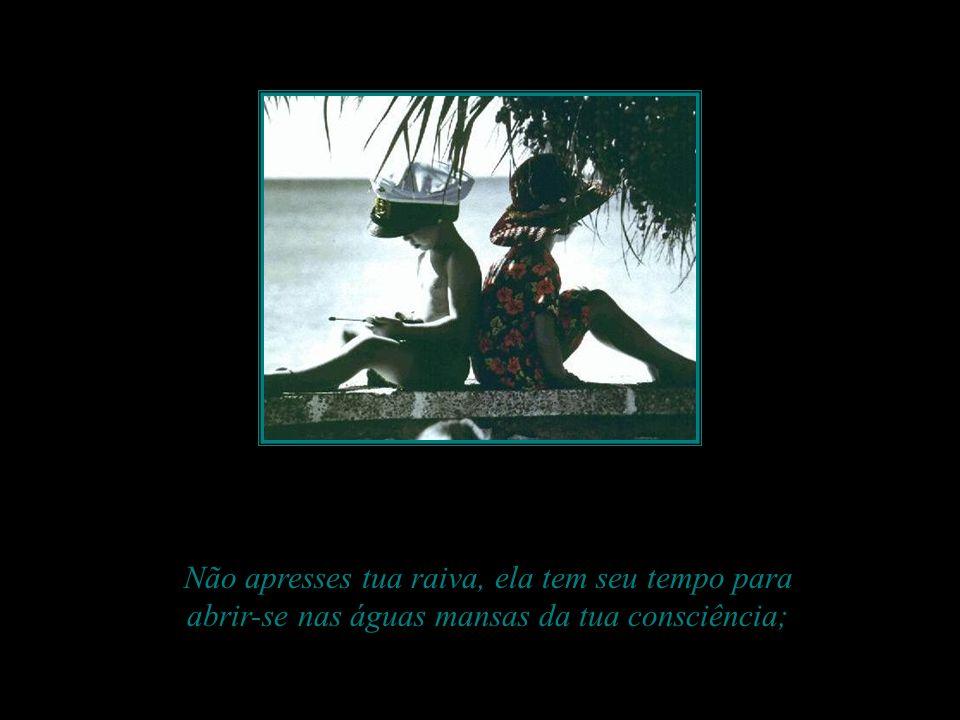 Não apresses tua raiva, ela tem seu tempo para abrir-se nas águas mansas da tua consciência;