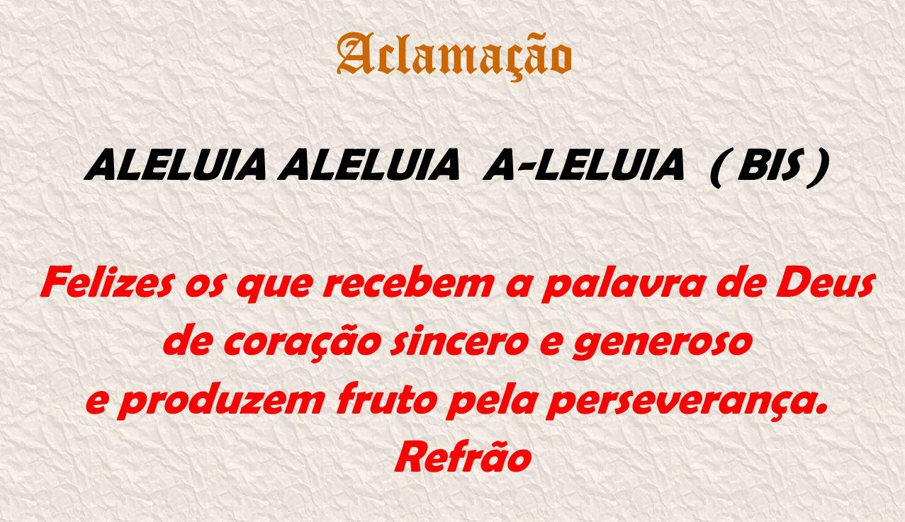 Aclamação ALELUIA ALELUIA A-LELUIA ( BIS ) Felizes os que recebem a palavra de Deus de coração sincero e generoso e produzem fruto pela perseverança.