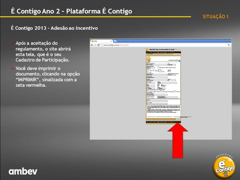 É Contigo 2013 – Adesão ao Incentivo É Contigo Ano 2 – Plataforma É Contigo • Imprima o seu Cadastro de Participação.