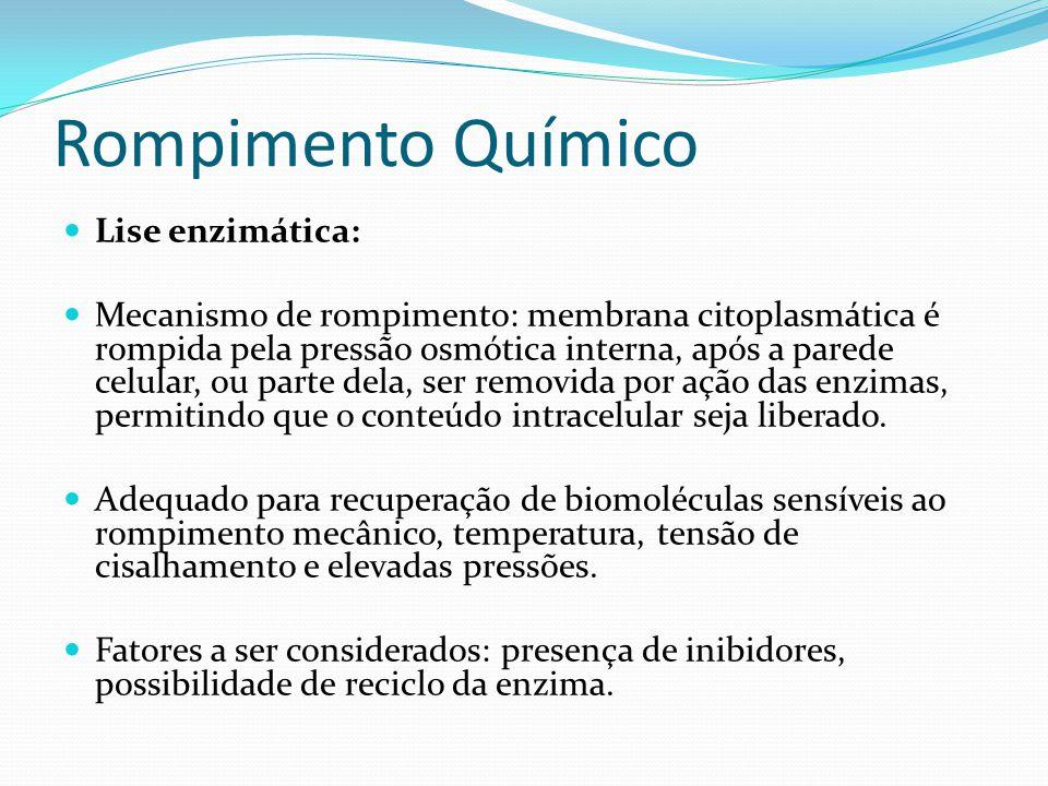 Rompimento Químico  Lise enzimática:  Mecanismo de rompimento: membrana citoplasmática é rompida pela pressão osmótica interna, após a parede celula
