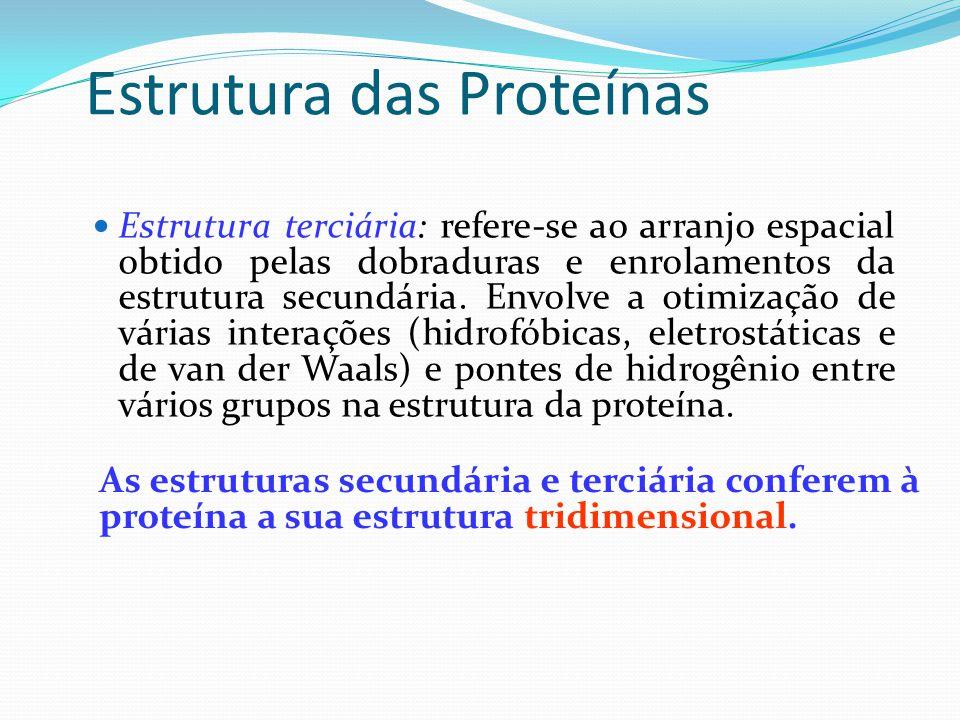 Estrutura das Proteínas  Estrutura terciária: refere-se ao arranjo espacial obtido pelas dobraduras e enrolamentos da estrutura secundária. Envolve a