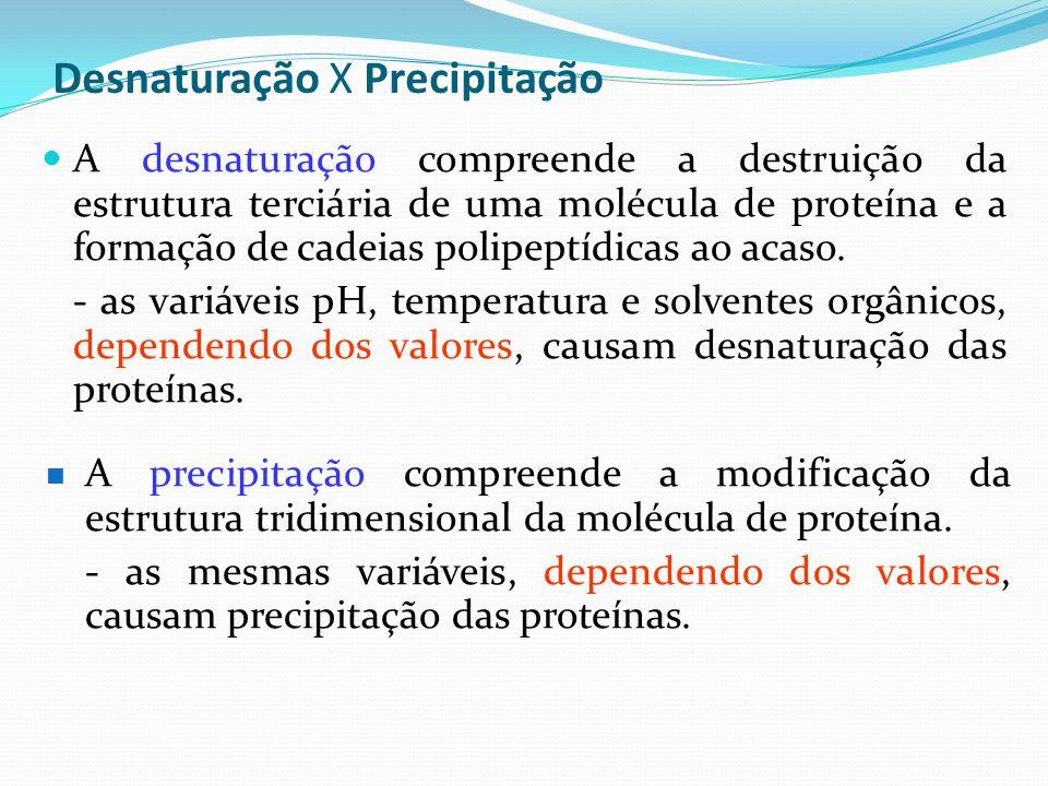 Desnaturação X Precipitação  A desnaturação compreende a destruição da estrutura terciária de uma molécula de proteína e a formação de cadeias polipe
