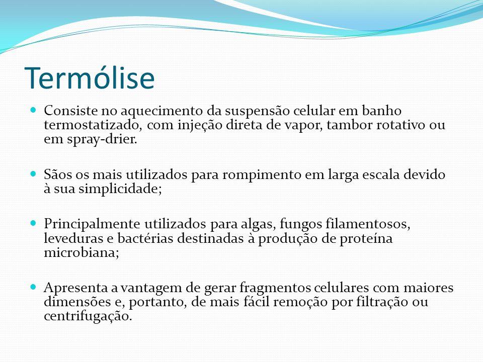 Termólise  Consiste no aquecimento da suspensão celular em banho termostatizado, com injeção direta de vapor, tambor rotativo ou em spray-drier.  Sã