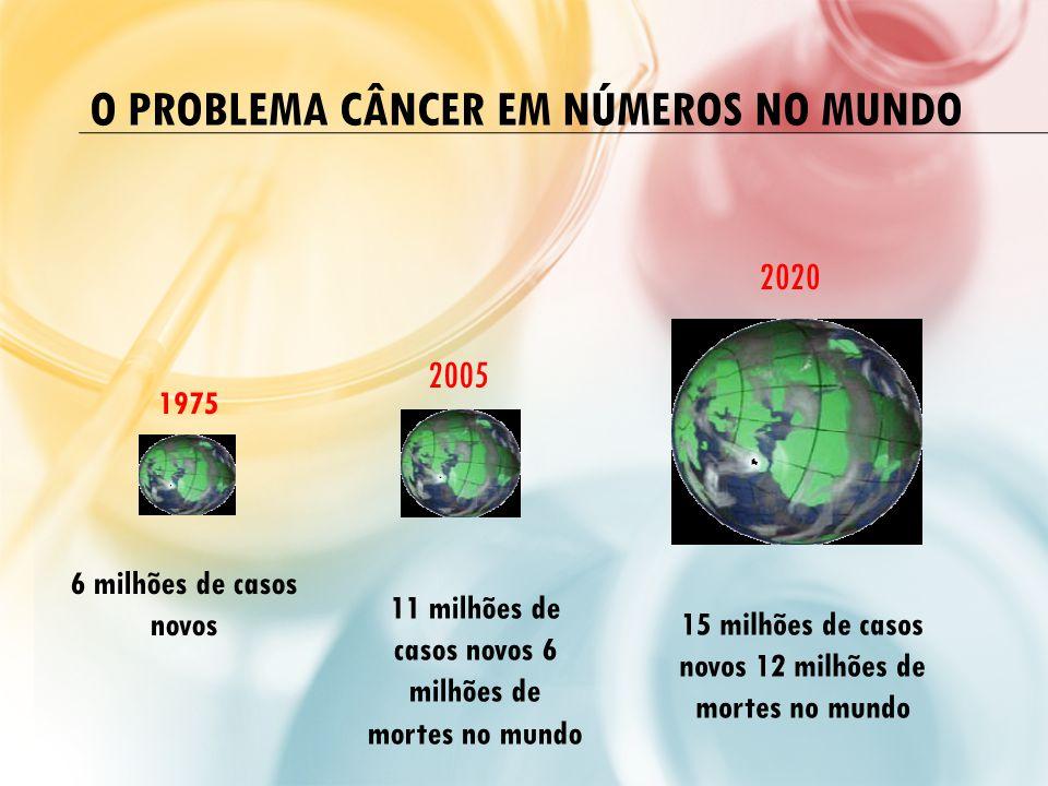 O PROBLEMA CÂNCER EM NÚMEROS NO MUNDO 1975 2005 2020 6 milhões de casos novos 11 milhões de casos novos 6 milhões de mortes no mundo 15 milhões de cas