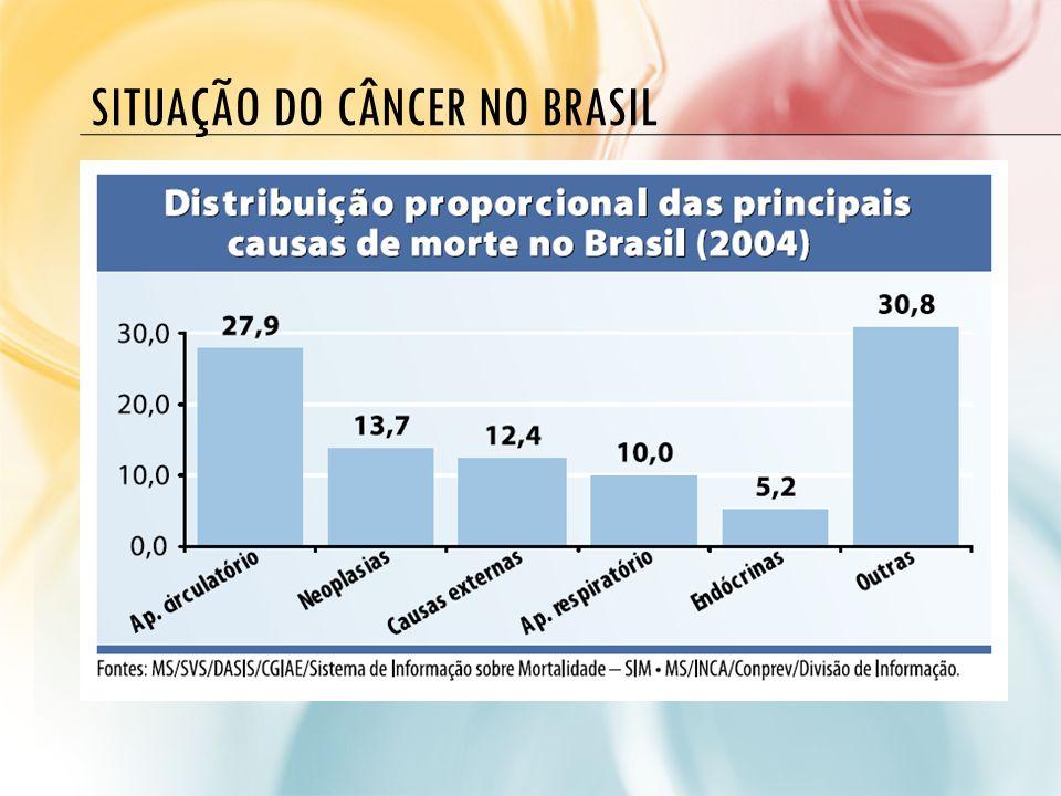 A SITUAÇÃO DO CÂNCER NO BRASIL MORTALIDADE: TENDÊNCIAS PARA OS PRINCIPAIS TIPOS Pulmão aumentou 96,95% Mama aumentou 38,62% Colón e reto aumentou 38,22% Leucemia aumentou 20,72% Colo do útero aumentou 7,04% Esôfago aumentou 6,49% Estômago diminuiu 72,85% Em mulheres, de 1979 a 2004, a taxa de mortalidade por câncer de: