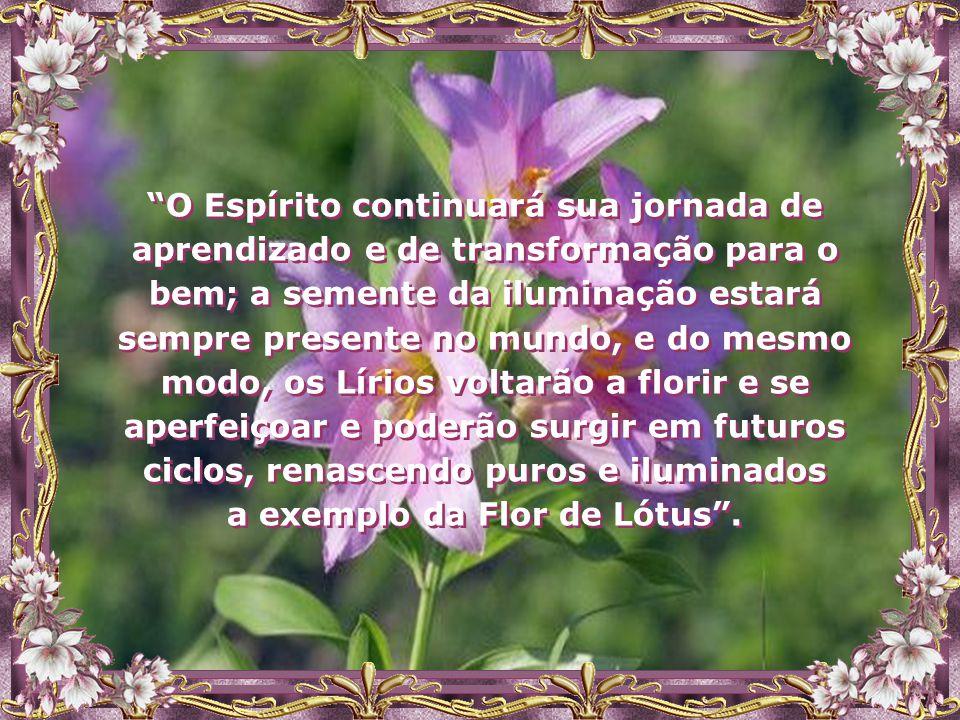 """""""O mundo continuará a se modificar; porém, as pessoas também precisarão da transformação no universo do espírito com uma conseqüente prática que lhe d"""