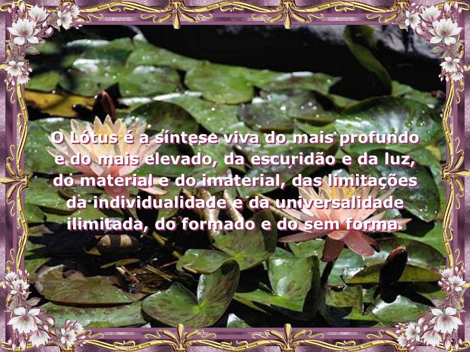 Assim, o Espírito deve elevar-se, aprender e crescer além deste mundo e o ultrapassar, como a Flor de Lótus, que, apesar de suas raízes estarem na pro