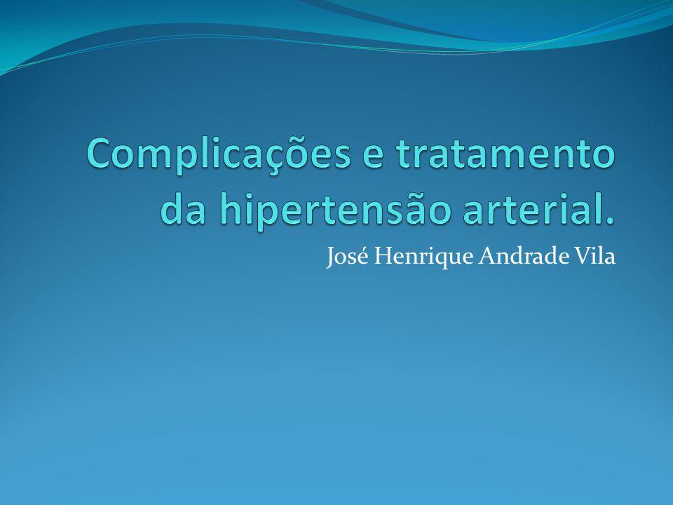 José Henrique Andrade Vila