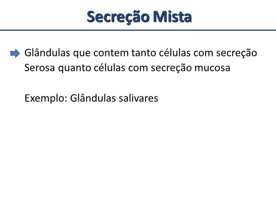 Secreção Mista Glândulas que contem tanto células com secreção Serosa quanto células com secreção mucosa Exemplo: Glândulas salivares