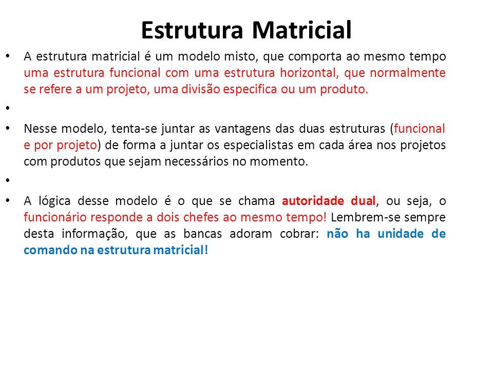 Estrutura Matricial • A estrutura matricial é um modelo misto, que comporta ao mesmo tempo uma estrutura funcional com uma estrutura horizontal, que n