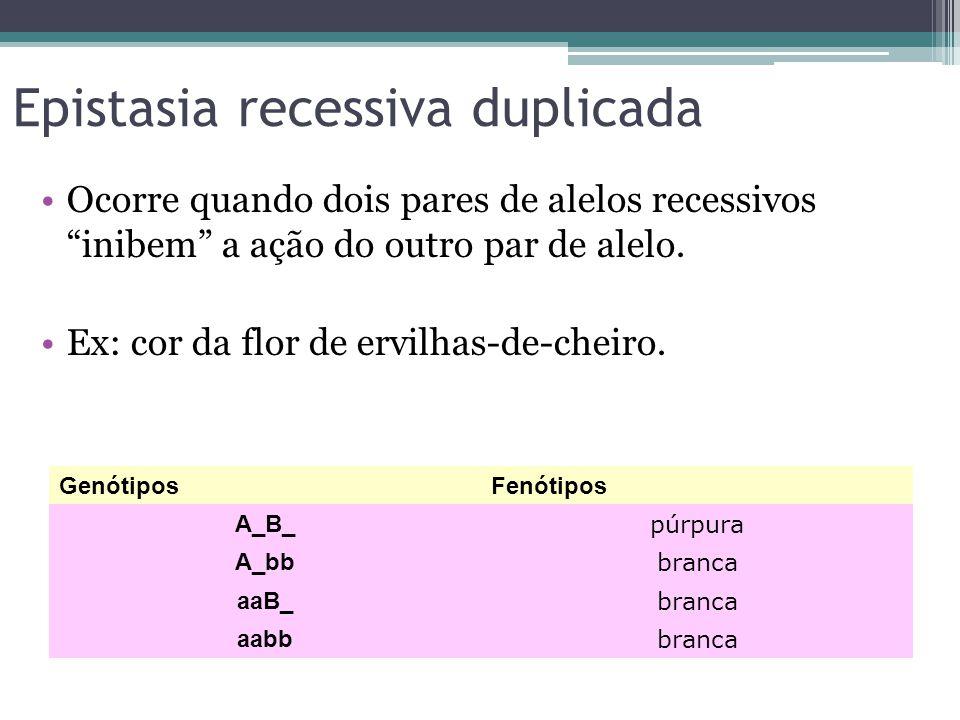 """Epistasia recessiva duplicada •Ocorre quando dois pares de alelos recessivos """"inibem"""" a ação do outro par de alelo. •Ex: cor da flor de ervilhas-de-ch"""