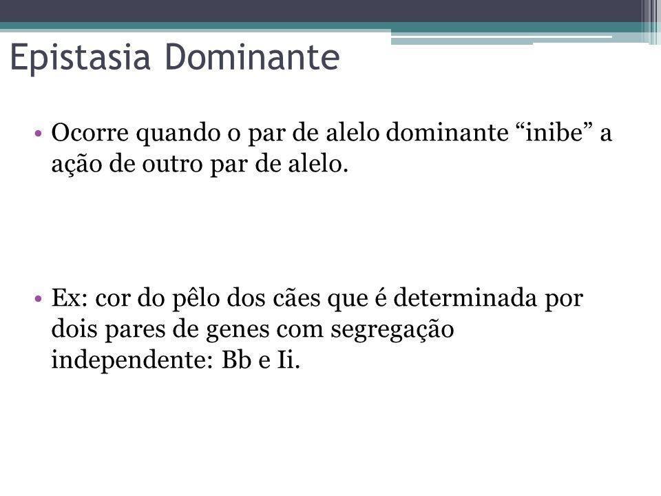 """Epistasia Dominante •Ocorre quando o par de alelo dominante """"inibe"""" a ação de outro par de alelo. •Ex: cor do pêlo dos cães que é determinada por dois"""