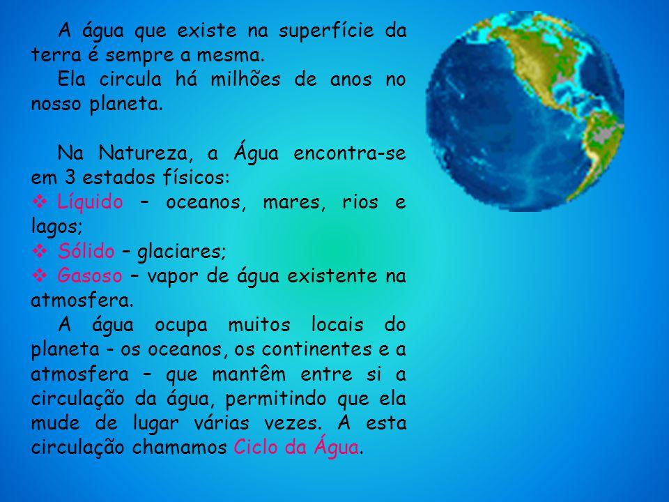 Sara Francisca 4ºD