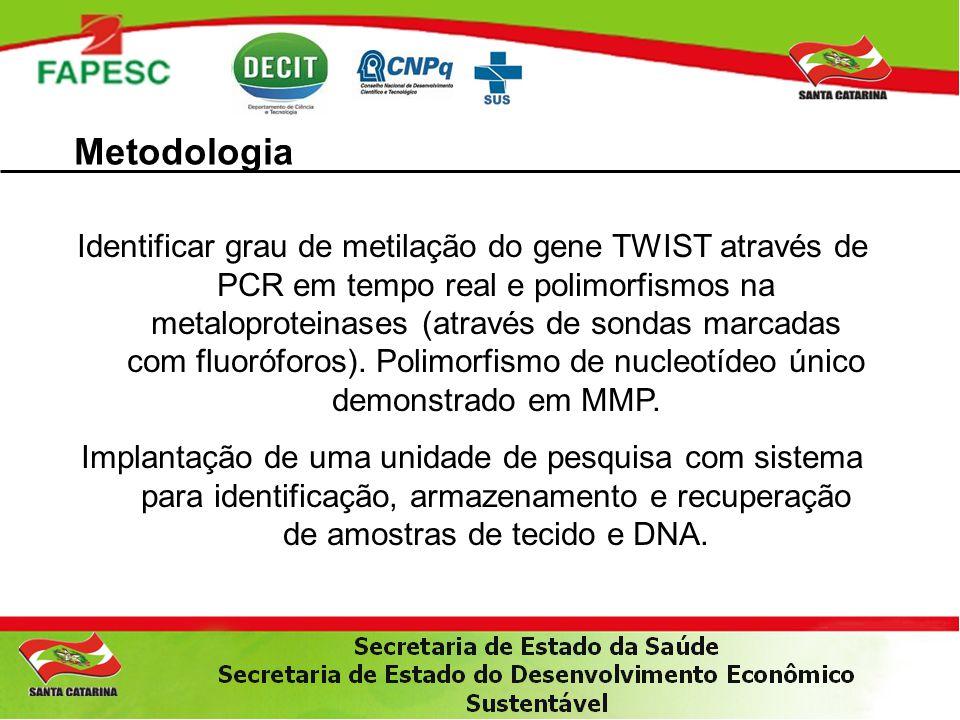 Metodologia Identificar grau de metilação do gene TWIST através de PCR em tempo real e polimorfismos na metaloproteinases (através de sondas marcadas
