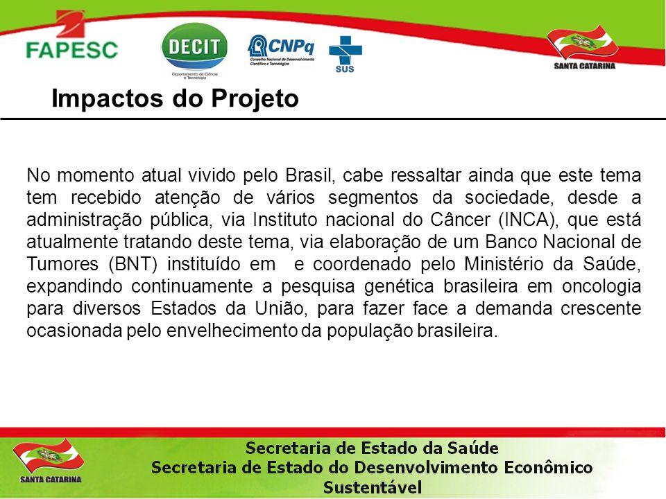 Impactos do Projeto No momento atual vivido pelo Brasil, cabe ressaltar ainda que este tema tem recebido atenção de vários segmentos da sociedade, des