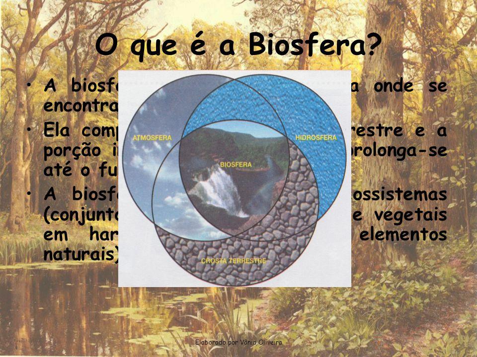 O que é a Biosfera? •A•A biosfera é a parte da Terra onde se encontram os seres vivos. •E•Ela compreende a superfície terrestre e a porção inferior da