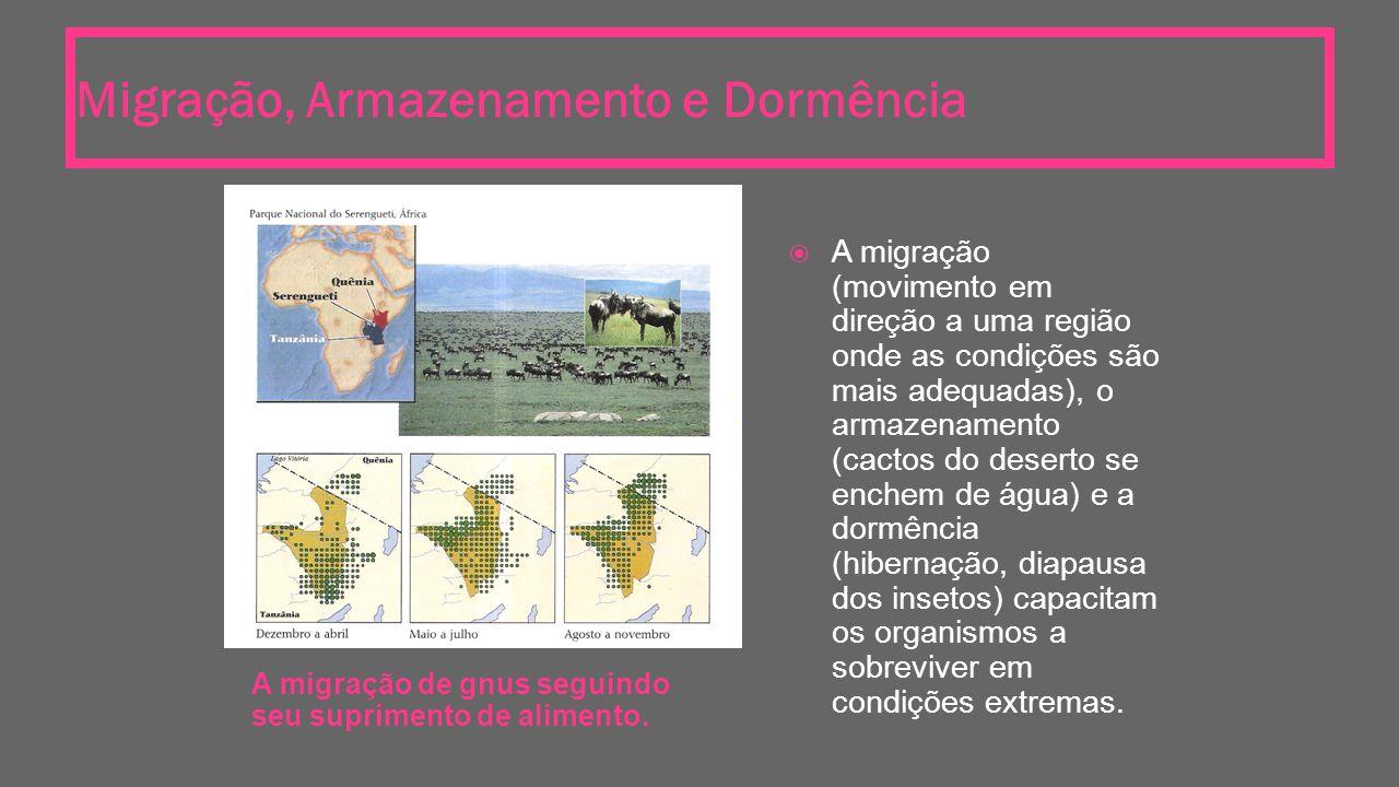 Migração, Armazenamento e Dormência A migração de gnus seguindo seu suprimento de alimento.  A migração (movimento em direção a uma região onde as co