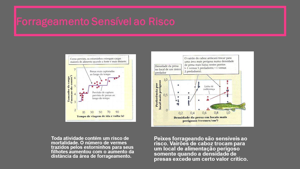 Forrageamento Sensível ao Risco Toda atividade contém um risco de mortalidade. O número de vermes trazidos pelos estorninhos para seus filhotes aument