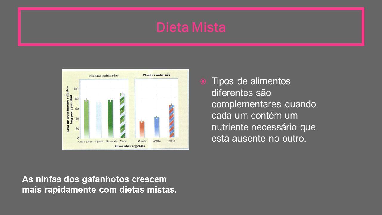 Dieta Mista As ninfas dos gafanhotos crescem mais rapidamente com dietas mistas.  Tipos de alimentos diferentes são complementares quando cada um con