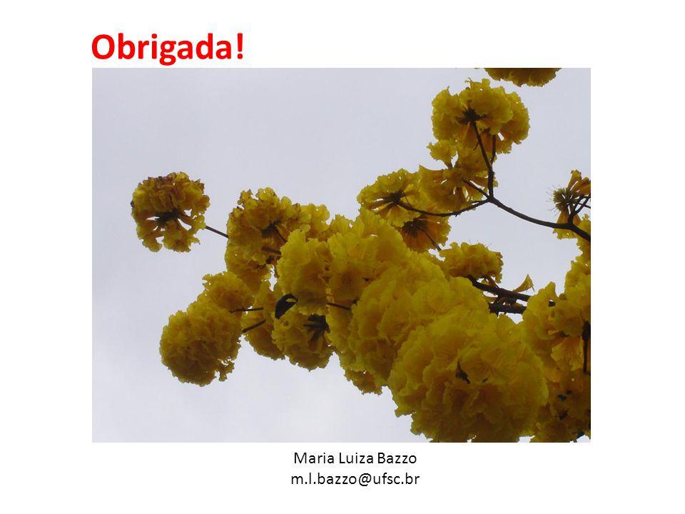 Obrigada! Maria Luiza Bazzo m.l.bazzo@ufsc.br