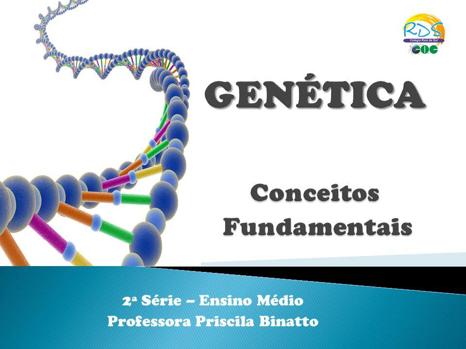 2ª Série – Ensino Médio Professora Priscila Binatto